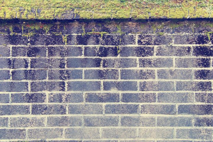 椿市小学校の壁